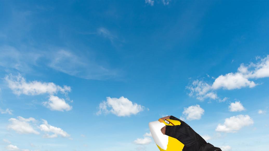 «Пак гранат «Angry Birds»» для CS 1.6