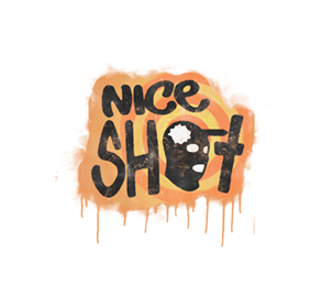 «Отличный выстрел» для CS 1.6