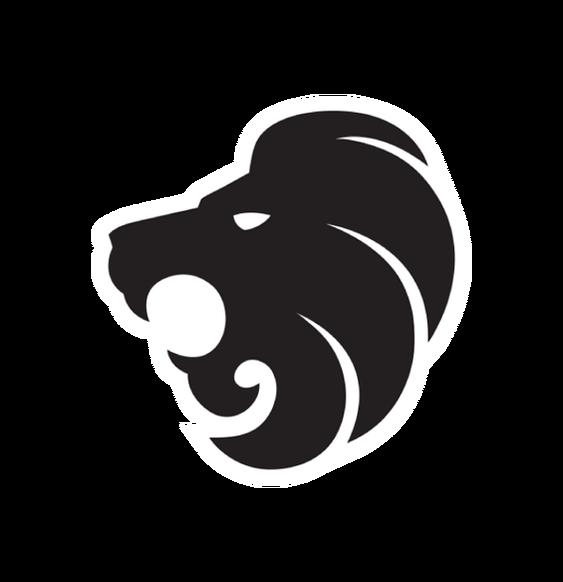 «North Logo» для CS 1.6