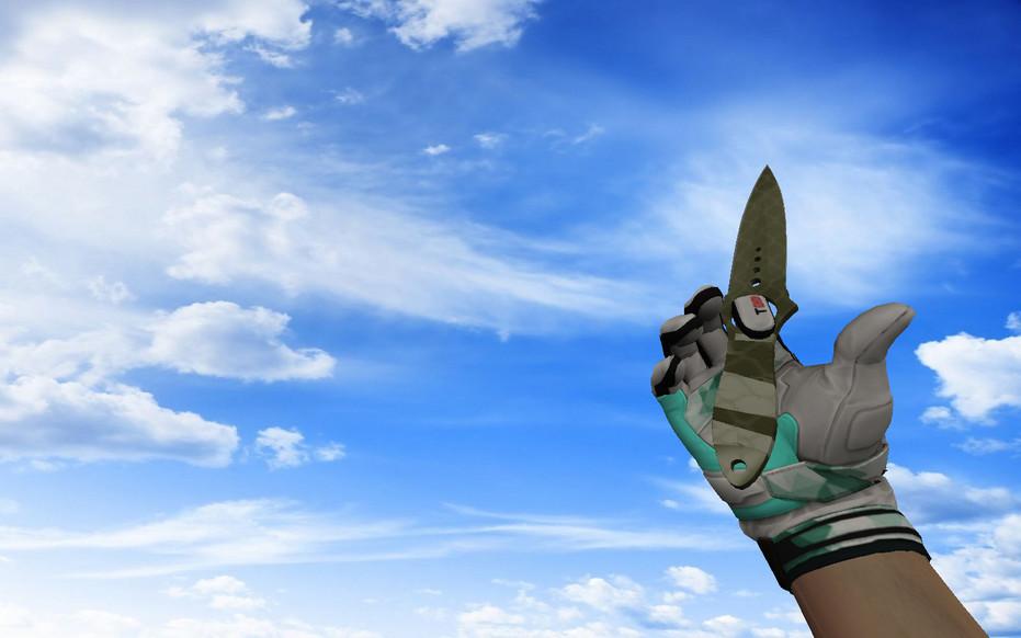 «☆ Скелетный нож | Африканская сетка» для CS 1.6