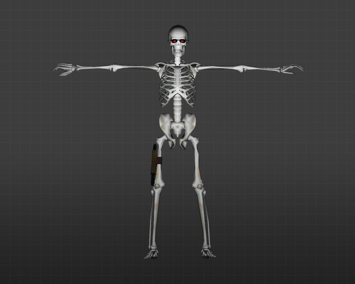 «Скелеты» для CS 1.6