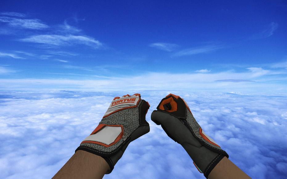 «Specialist Gloves   Foundation Pack» для CS 1.6