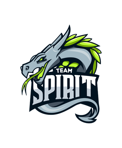 «Team Spirit Logo» для CS 1.6