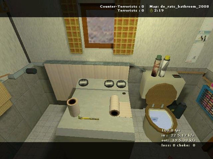 de_rats_bathroom_2008