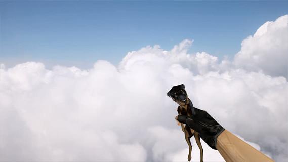 Dog Grenade