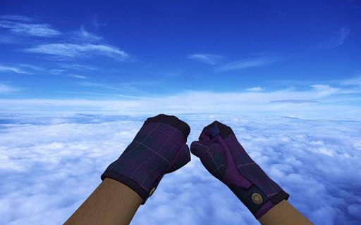 Пак ★ Водительские перчатки | Имперская клетка