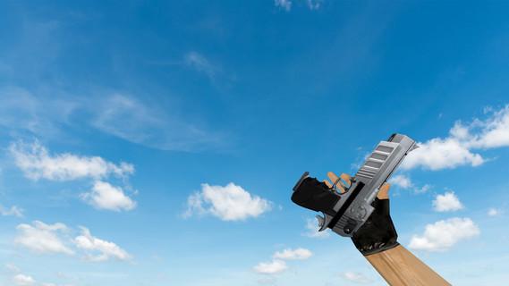 Duke Nukem Gun