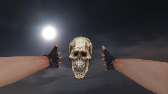 Human Skull Grenade