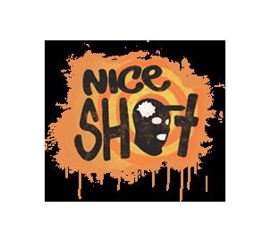 Отличный выстрел