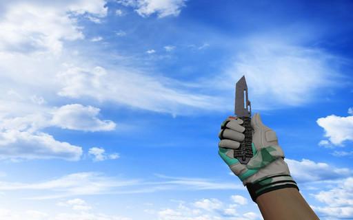 ☆ Паракорд-нож | Воронёная сталь
