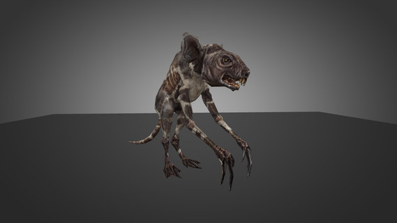 S.T.A.L.K.E.R Rat Thingy