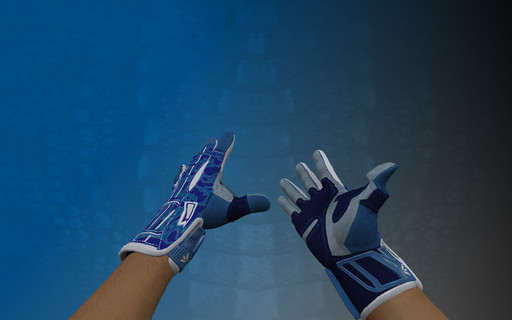 Пак ★ Спортивные перчатки | Амфибия